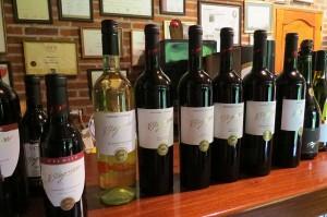 Degustação de Vinhos no Uruguay