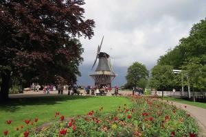 Moinho de vento e tulipas no Keukenhof (Holanda)