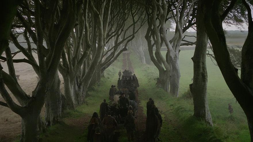 Dark Hedges: estrada por onde Arya fugiu vestida de menino