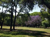 Seis parques em Buenos Aires.