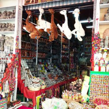 Mercado das Bruxas: Lhamas empalhados y otras cositas más